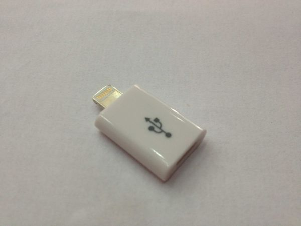 This item is currently out of stock & Souq | Lightning to Micro USB Adapter for iPhone 5 | UAE