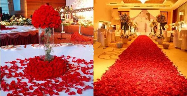 1000 Piece Wine Red Silk Rose Petals Artificial Flower Wedding Decor