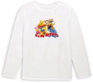 Pooh And Friends Its My Birthday Long Sleeve T Shirt 8 To 9 Years