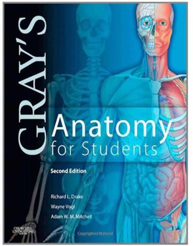 Grays Anatomy For Students 2nd Edition By Richard L Drake