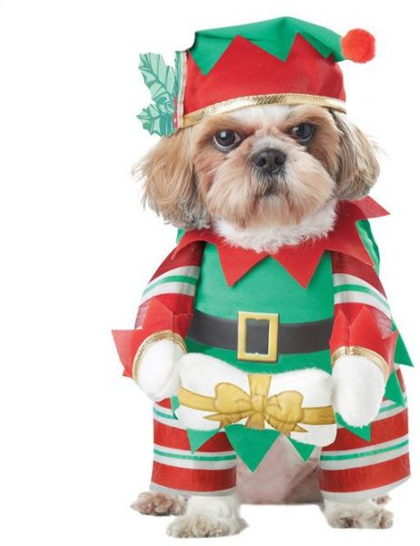 dog christmas festival clothes pet baby turned equipment m size