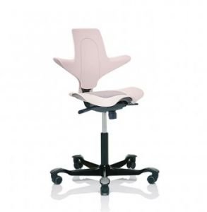 Excellent Hag Capisco Puls 8010 Ergonomic Office Task Chair Pink Onthecornerstone Fun Painted Chair Ideas Images Onthecornerstoneorg