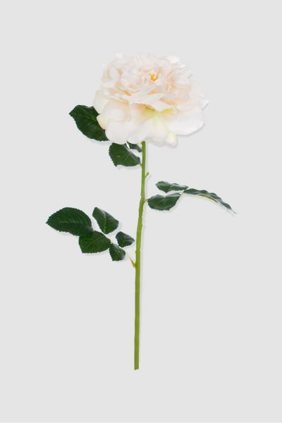 BLANC MARICLO Faux Long-Stemmed Rose