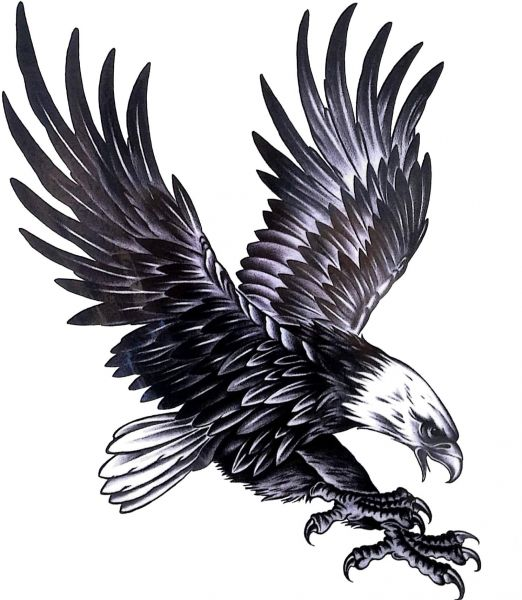 Temporary Tattoo Sticker Large Bald Eagle Flying Bird Monochrome