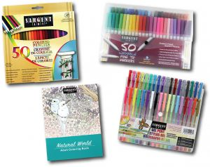 Buy Crayola Colored Pencil Design And Sketch Art Kit 65 Pieces