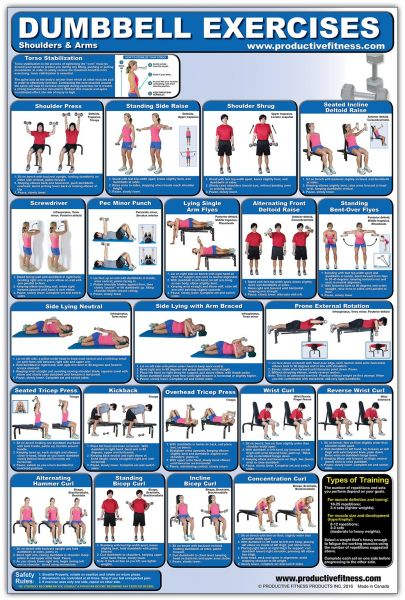 Laminated Dumbbell Exercise Poster Chart Shoulders And Arms Created By Fitness Experts With University Degrees In Physiology Etc