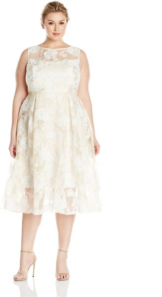 0859fd7587e04 Adrianna Papell Women s Plus Size Printed Organza Fit and Flare Dress