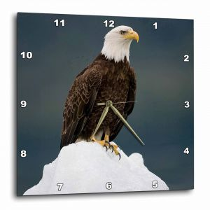10 by 10-Inch 3dRose dpp/_16339/_1 Wall Clock Independence Day Patriotic Eagle