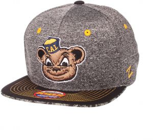 Team Color NCAA California Golden Bears Youth Outerstuff Tech Structured Snapback Hat Youth One Size