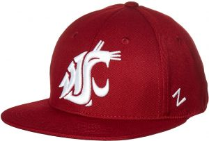 380602ed1c8 Zephyr NCAA Washington State Cougars Men s M15 Fitted Hat