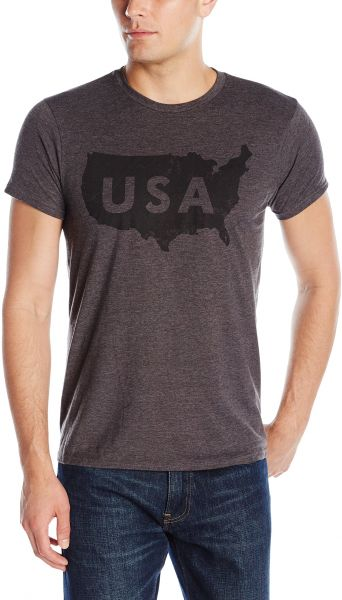 9a08b0703 Hanes Men's Graphic Tee-Americana Collection, Primary Slate Heather ...