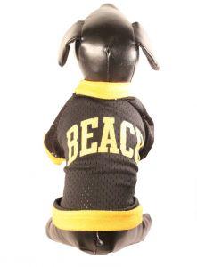 bdff42fb7 All Star Dogs NCAA Long Beach State 49ers Athletic Mesh Dog Jersey
