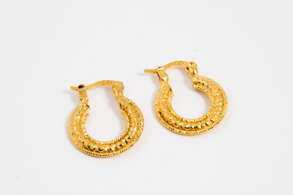 VP Jewels 22k Gold Plated Fine Hoop Earrings price review and